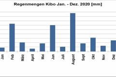 Kibo-Regenmengen-2020