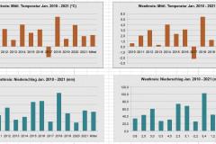 Vergleich-Grafik1-Jan2021