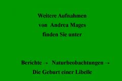 Hinweis-Andrea