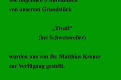 Kronauer-neu